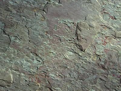 Fevi Stone